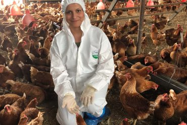 AgriFutures Chicken Meat researcher Lida Omaleki in chicken shed